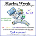 maries-words-vocabulary-cards-review